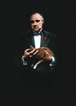 Крестный отец (The Godfather), Френсис Форд Коппола - фото 4324